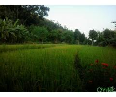 http://chhito.com/real-estate/land-plot-for-sale/land-for-sale_1274
