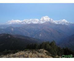 http://chhito.com/services/agencies/everest-heli-tour-in-nepal_1356