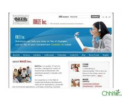 http://chhito.com/services/computer-web-services/get-free-hosting-with-website-design-order_1421
