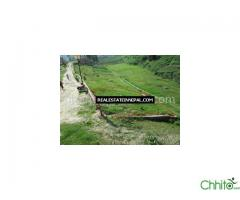http://chhito.com/want-to-buy-buyer-list/real-estate-1/land-on-sale-at-goldhungaren-l-792_2178