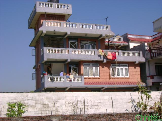house with 12 ana land situated lalitpur submetropol. 14 is for sale urgently