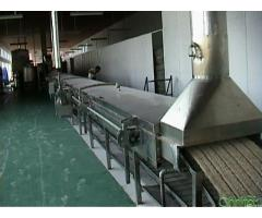 Instant noodle machinery and production lines