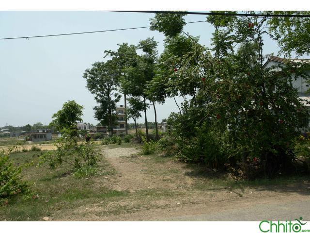 Land on sale Ratnanagar, Pithuwa Chitwan