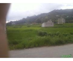 http://chhito.com/real-estate/land-plot-for-sale/sankhumelamchi-highway-touch-7-aana-ghaderi-jagga-bikri-ma_3714