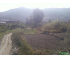 http://chhito.com/real-estate/land-plot-for-sale/250000-aana-ma-ghaderi-bikrima_3776