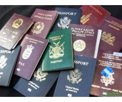 http://chhito.com/services/agencies/get-your-work-permit-passport-visas-licences-and-certificates_5760